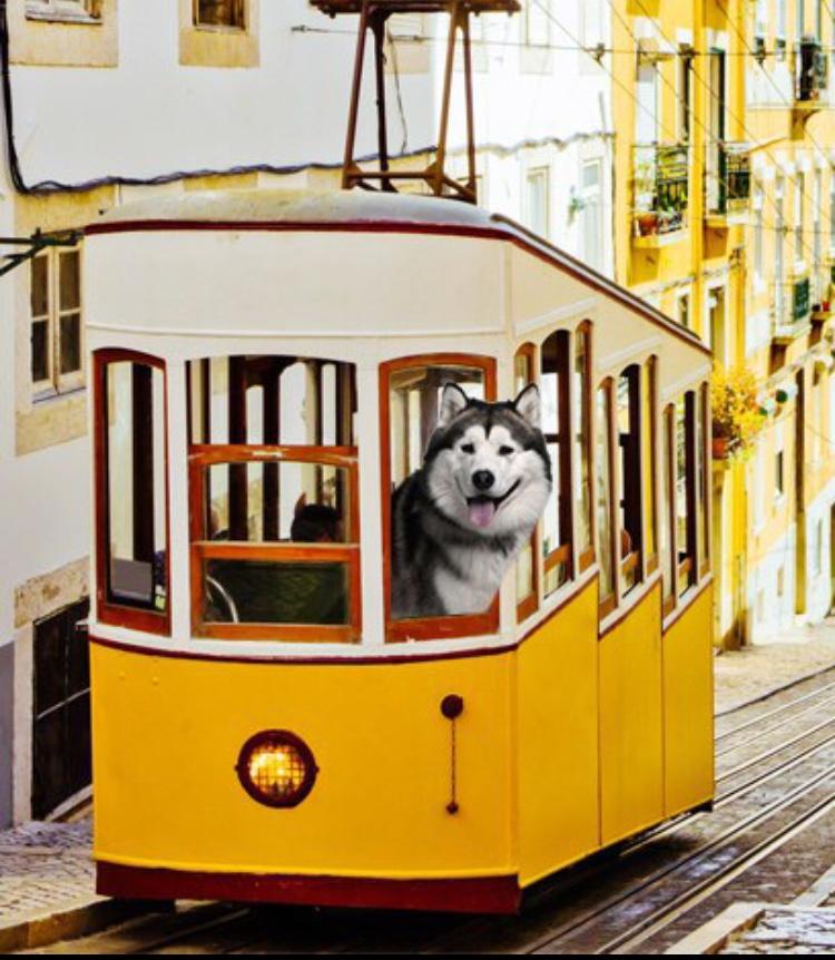 Lisbon/Timeplace.me